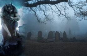 Misteriosa figura de Hombre Lobo con cara de pastor alemán es visto en el mismo cementerio con años de diferencia